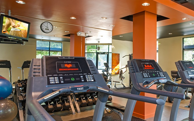 well equipped fitness room with many windows